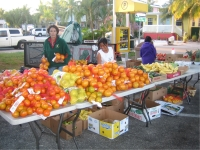 Women Selling Fruit