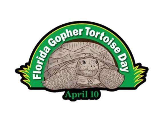 Gopher Tortoise Day!
